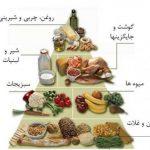 تغذیه و بهداشت غذا در دوران بارداری