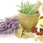مقاله در مورد گیاهان دارویی