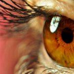 مقاله ی کامل درمورد چشم انسان