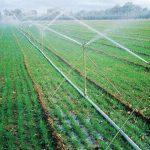 مقاله در مورد آب و آبیاری در کشاورزی