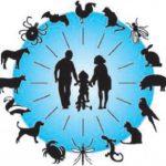 مقاله در مورد تغذیه در پیشگیری و کنترل بیماریهای واگیر